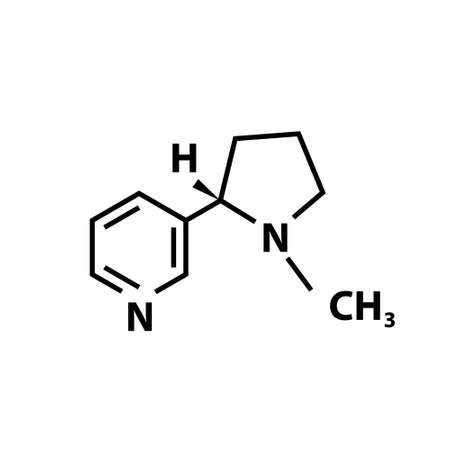 Nicotine chemical structure icon on white. Vector Vettoriali