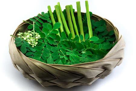 oleifera: Moringa leave and stick