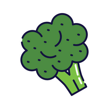 Illustration of broccoli. Filled-outline icon of broccoli.