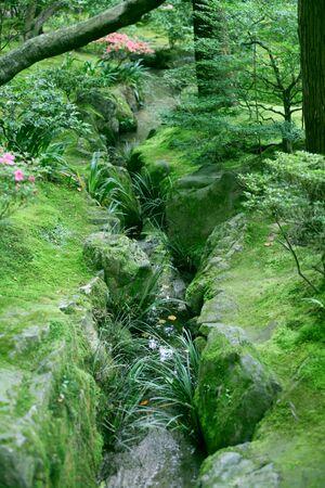 a creek in Kyoto