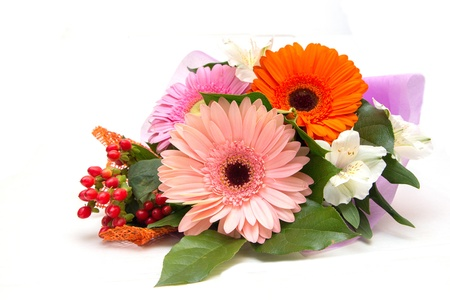 closeup of pink daisy with: Bouquet of gerberas on a white background