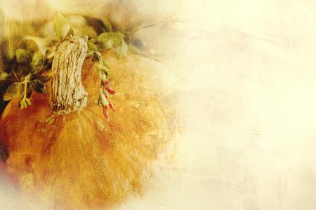 Background texture with a pumpkin and herbs Still life composition of autumn seasonal vegetables Standard-Bild