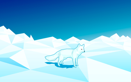 resizable: White fox in low poly floe in style on the north pole - polygonal editable vector illustration.