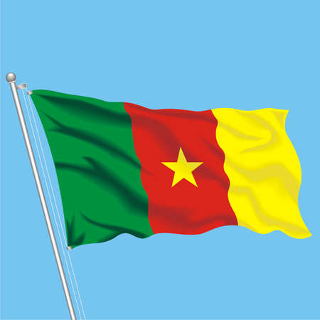 Developing flag of Cameroon