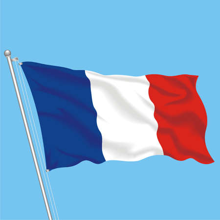 Developing flag of France Stock Vector - 79581728