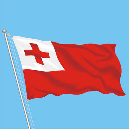 Developing flag of Tonga Illustration