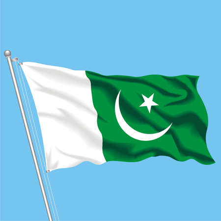 Developing flag of Pakistan Stock Vector - 79892849