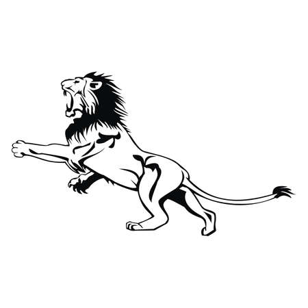 lion Stock Vector - 80572267