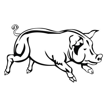 pig Stock Vector - 80572270