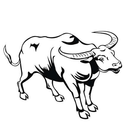buffalo Stock Vector - 80786277