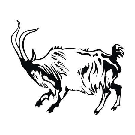 goat Stock Vector - 80786272