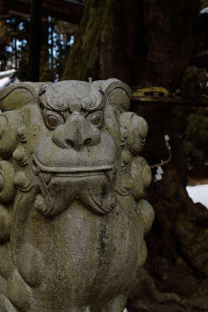 sober: At the guardian lion-dog at Shinto shrine