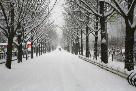 Winter Stock Photo - 10052418