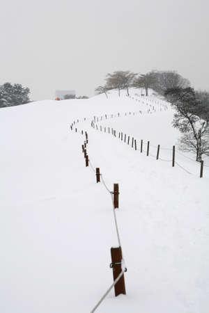 Winter Stock Photo - 10052450
