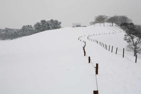 Winter Stock Photo - 10052451