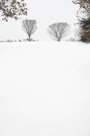 Winter Stock Photo - 10187549