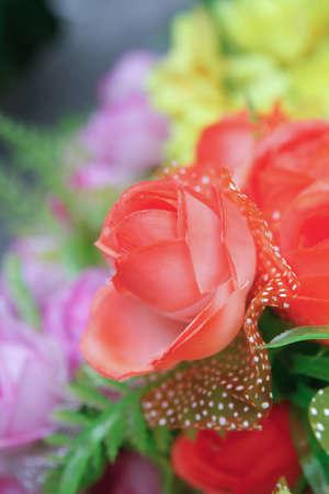 aralia: Flower image