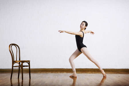the appointed limit of life: Dance LANG_EVOIMAGES