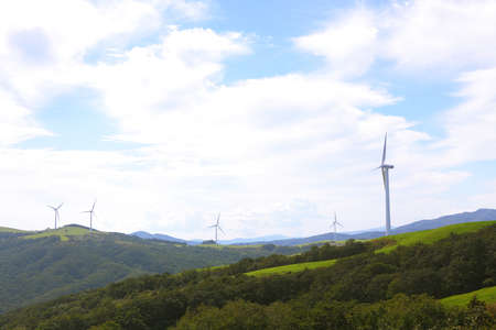 pastures of daegwanryeong: Photo of big pasture