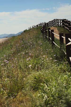 pastures of daegwanryeong: View of large pasture