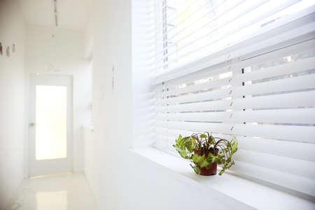 Interior trend Stock Photo - 10230905