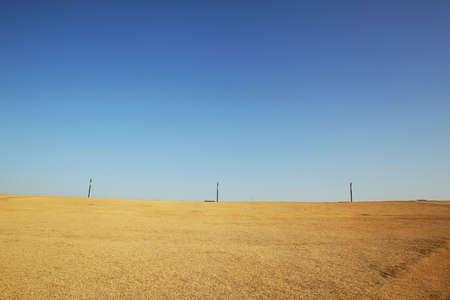 Exotic scenery of beautiful fields Stock Photo - 10231334