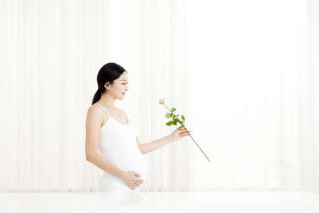 pregnant woman  Stock Photo - 16735547