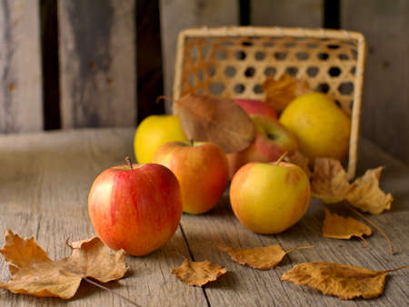 overturned basket, apples and dry leaves, still life, shallow depth of field