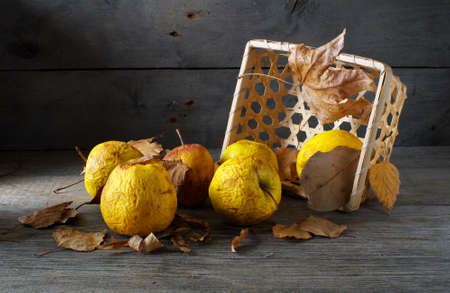 withered apples spilled from overturned basket with dry leaves, still life