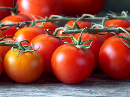 ripe cherry tomatoes on the vines, shallow depth of field, closeup