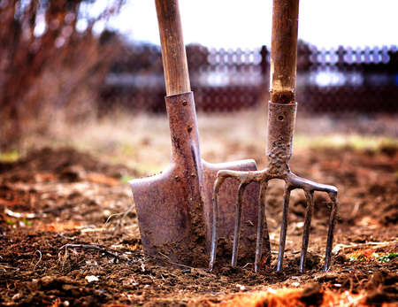 shovel and pitchfork in soil in spring garden, shallow depth of field, toned
