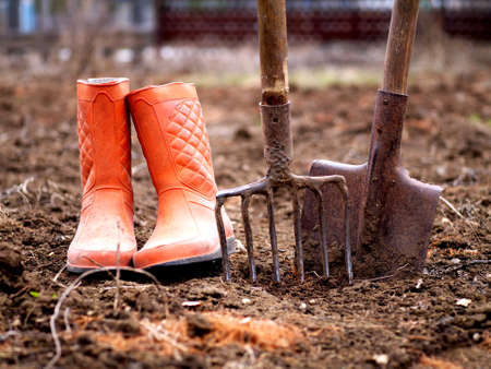 shovel, pitchfork and orange rubber boots in soil in spring garden, shallow depth of field