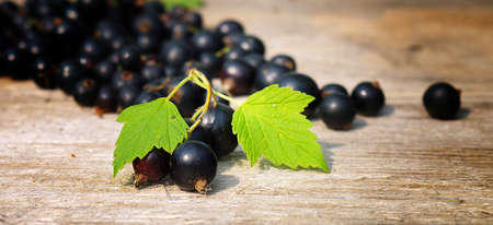 scaterred of black currant berries on a wooden table, closeup, shallow depth of field