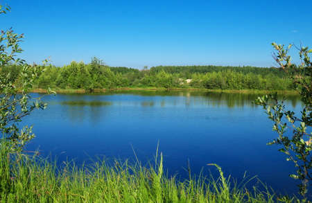 forest lake in summer, sunny day, clear sky Stock fotó