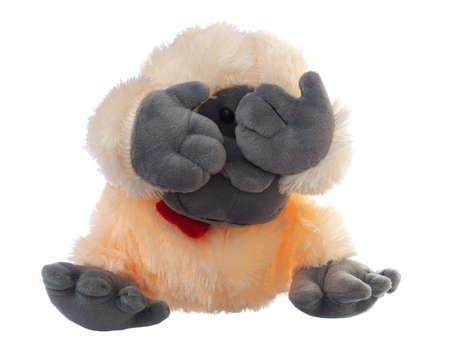 watching monkey soft toy on white background Stock fotó