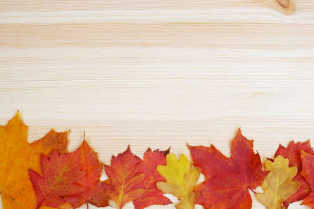 frame composed of autumn red and yellow leaves on wooden background Stock fotó