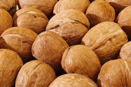 unpeeled walnuts in shell background pattern