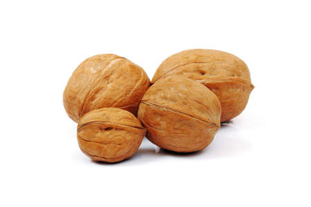 four walnuts of different sizes isolated on white background