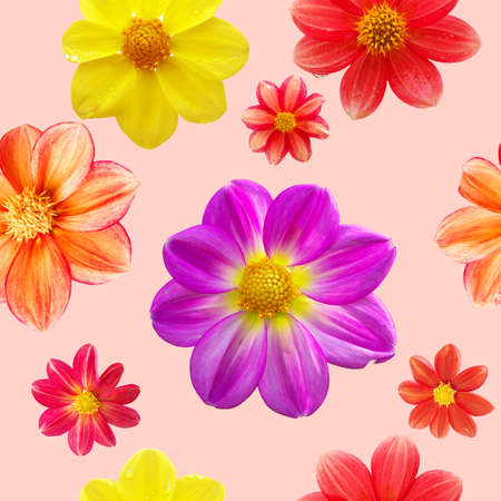 seamless pattern with red, orange, yellow and purple flower heads isolated on pink background