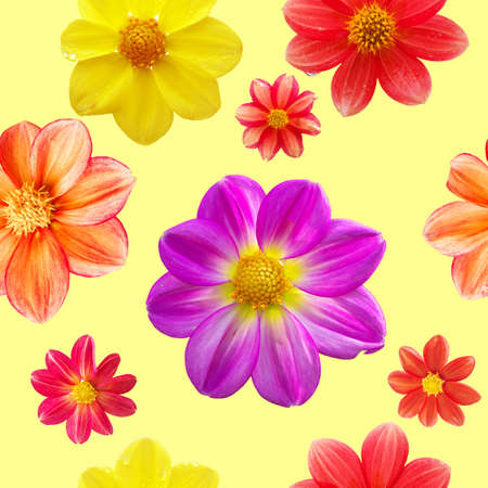 seamless pattern with red, orange, yellow and purple flower heads isolated on yellow background Stock fotó