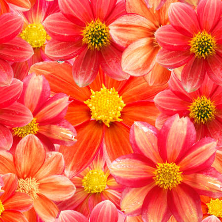seamless floral pattern of various red flowers