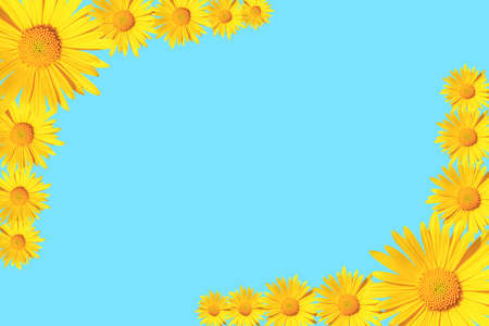 Yellow daisy flowers corner arrangement on blue background, flat lay, copy space Stock fotó - 158892072