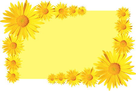 yellow daisy flowers corner arrangement on yellow  background, flat lay, copy space Stock fotó