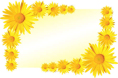 yellow daisy flowers corner arrangement on yellow and white gradient background, flat lay, copy space Stock fotó - 159039008