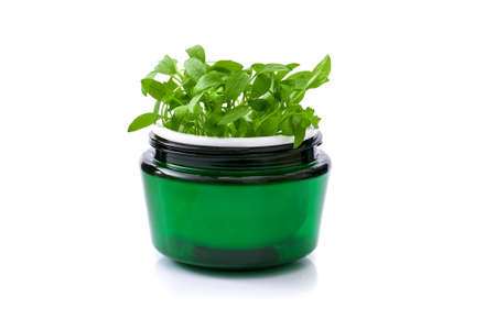 Green face cream jar with baby sprouts in it isolated on white background. Natural herbal cosmetics concept, Stock fotó