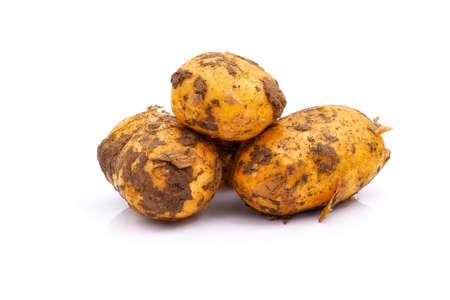 Dirty big ripe potato tubers isolated on white background. Yellow potato tubers. Stock fotó