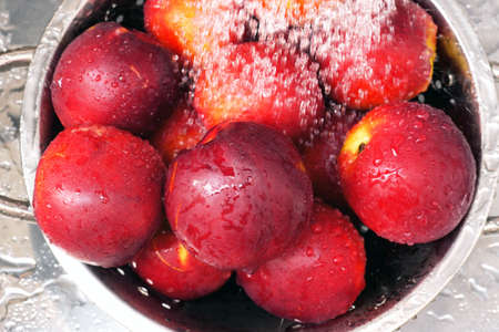 Top view on fresh ripe nectarines being washed with water in steel colander.