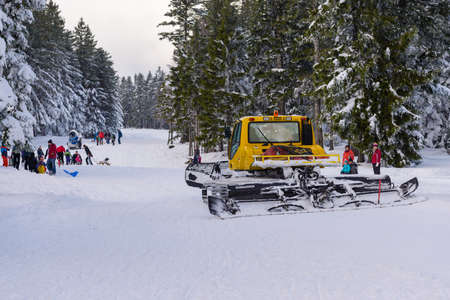 snow grooming machine: Pohorje, Slovenia - November 13, 2016: Snowcat grooming slope for children with parents sledding and having fun on first winter snow in the season on the slopes of Trije kralji ski resort on Pohorje
