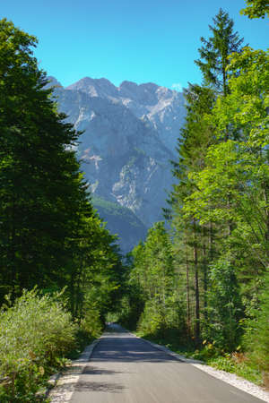 Alpine road leading into a valley on a sunny day, mountains in background Imagens