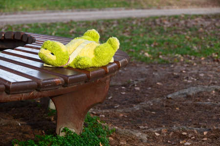 Lonely forgotten soft frog toy lying on the bench in park waiting for owner.